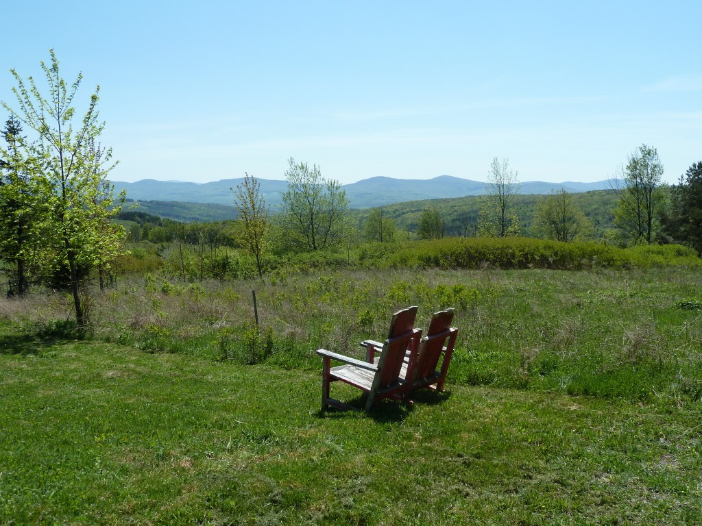 View of the Catskills.
