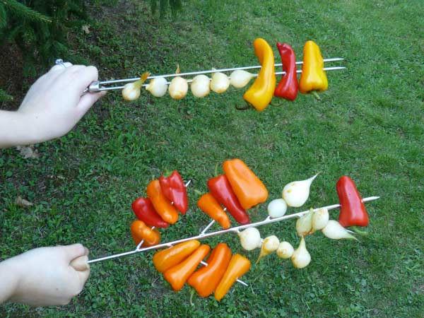 Comparison of skewers.