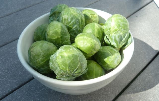 Fresh brussel sprouts.
